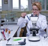 Lavoro di laboratorio Fotografia Stock
