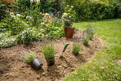 Lavoro in giardino immagini stock libere da diritti