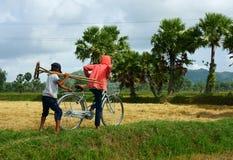 Lavoro infantile alla campagna del povero dell'Asia Fotografia Stock Libera da Diritti