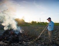 Lavoro nel giardino Rami secchi combustione dell'agricoltore Immagini Stock