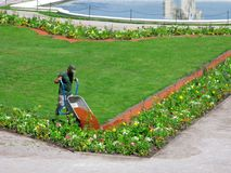 Lavoro nel parco della città, operaio del paesaggio con la carriola del giardino fotografie stock libere da diritti