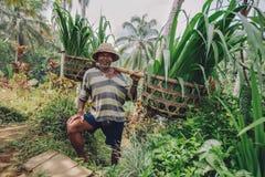Lavoro sorridente dell'agricoltore senior nella sua azienda agricola Fotografia Stock Libera da Diritti