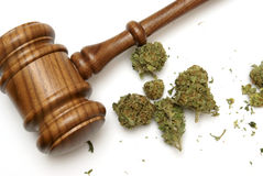 Law and Marijuana. Marijuana and a gavel together for many legal concepts on the drug stock image