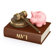 Law and money Royalty Free Stock Image