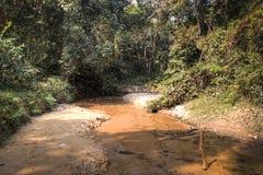 Lawacharra国家公园在Srimangal,孟加拉国 免版税库存照片