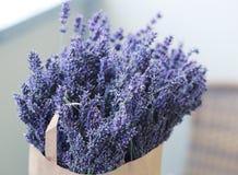 Lawenda kwiaty podnoszący up Zdjęcia Stock