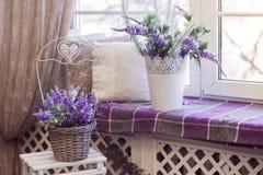 Lawenda kwitnie w białych garnkach i łozinowych koszy stojakach na windowsill i Obraz Stock