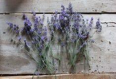 Lawenda susi kwiaty na drewnianej powierzchni Zdjęcie Royalty Free