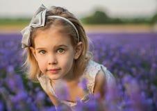 Lawendowa dziewczyna Zdjęcia Royalty Free