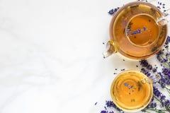 Lawendowa herbata w teapot z świeżymi kwiatami nad bielu marmuru stołem i filiżance Ziołowy napój Odgórny widok Zdjęcie Royalty Free