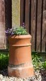 Lawendowa roślina w odzyskującym kominowym garnku Zdjęcia Royalty Free