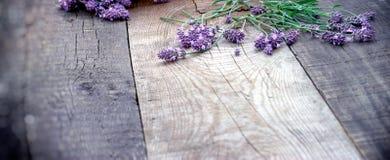 Lawendowy kwiat na drewnianym nieociosanym tle - stół fotografia stock