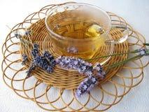 lawendy herbaciane Zdjęcie Stock