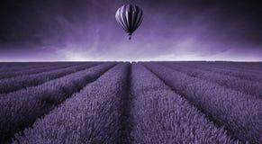 Lawendy lata zmierzchu śródpolny krajobraz z gorące powietrze balonu brzmieniem Fotografia Stock