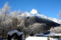 lawinowej przerwy nakrętki lewy góra przygotowywał dobrze cień błyszczącego skłonu śniegu szczyt target1813_0_ Zdjęcia Stock