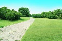 Lawn. The road towards the horizon royalty free stock photos