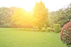 lawn Arkivbild
