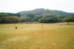 lawn royaltyfri foto