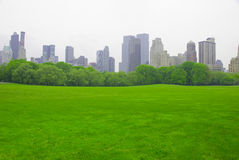 Lawn. The Great Lawn in Central Park, New York City Stock Images