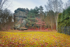 Lawn with autumn leaves before the rock Stock Photo