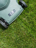 Lawn background Stock Image