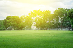 Lawn. Blur with soft light for background Stock Image
