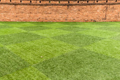 Lawn and brick wall. S contrasting colors Stock Photo