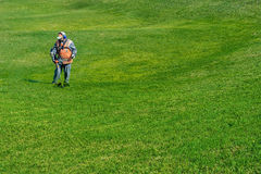 Lawn care. Cutting grass. Stock Photo