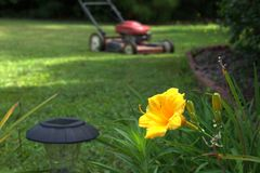 Lawn Care and Gardening Royalty Free Stock Photos