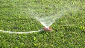 Lawn care irrigation system spray water on green grass stock video. Landscaping irrigation system with watering pipe and diffusion sprinkler at works stock video stock footage