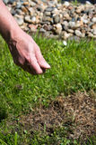 Lawn Care. In spring time. Work in a garden Royalty Free Stock Photo