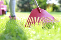 Lawn care Royalty Free Stock Photography