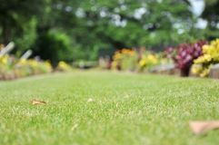 Lawn in a cemetery with headstones Royalty Free Stock Photos