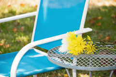 Lawn Chair and Flowers Stock Images