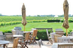 Lawn chairs by the vineyard Stock Photos
