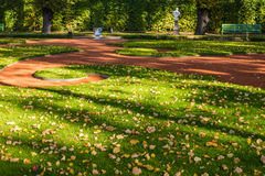 Lawn in the city garden Royalty Free Stock Photos