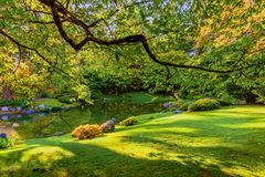 Lawn with clipped green grass near a river in a park with trees. A lawn with clipped green grass near a river in a park with trees and bushes, stones and a Royalty Free Stock Images