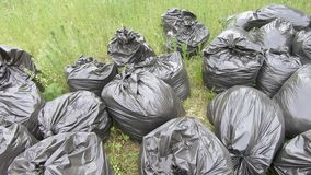 Garbage bags on the lawn. On the lawn are collected garbage in black bags stock video footage