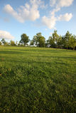 Lawn in Copenhagen suburb Royalty Free Stock Photo