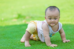 Lawn crawling baby in the park Royalty Free Stock Photography