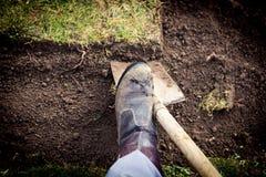 Lawn digging Stock Image