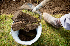 Lawn digging Stock Photography