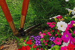 Lawn Edge Being Cut Royalty Free Stock Photography