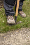 Lawn Edging. Person edging a lawn with a lawn edger Royalty Free Stock Photography