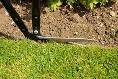 Lawn Edging Royalty Free Stock Images