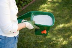 Lawn fertilizing. Woman takes care about her lawn fertilizing with handheld crank spreader in front yard Stock Photography