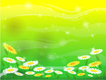Lawn and flower royalty free illustration