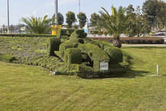 Lawn with flower bed in the form race car of Formula 1 in Sochi Olympic Park. Adler, Sochi, Krasnodar region, Russia - July 9, 2016: Lawn with flower bed in the Royalty Free Stock Photo