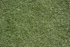 Lawn football field (soccer field, green grass).  Royalty Free Stock Photo