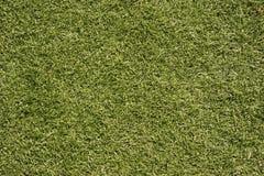 Lawn football field (soccer field, green grass) Stock Photos
